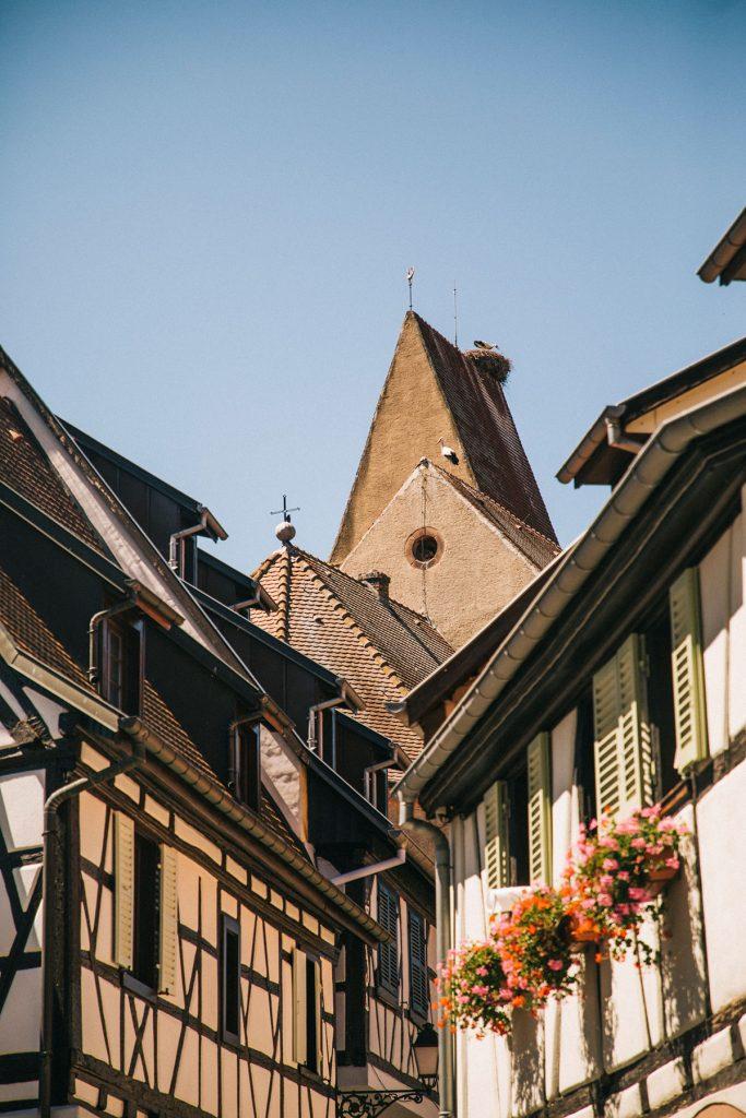 Le nid de cigogne dans le village d'Eguisheim. crédit photo : Clara Ferrand - blog Wildroad