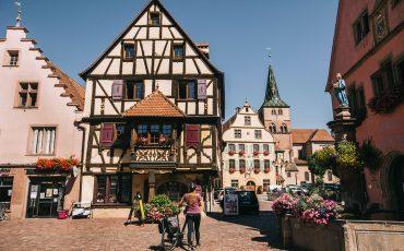 itinéraire à vélo en Alsace : la véloroute du vignoble. crédit photo : Clara Ferrand - blog Wildroad