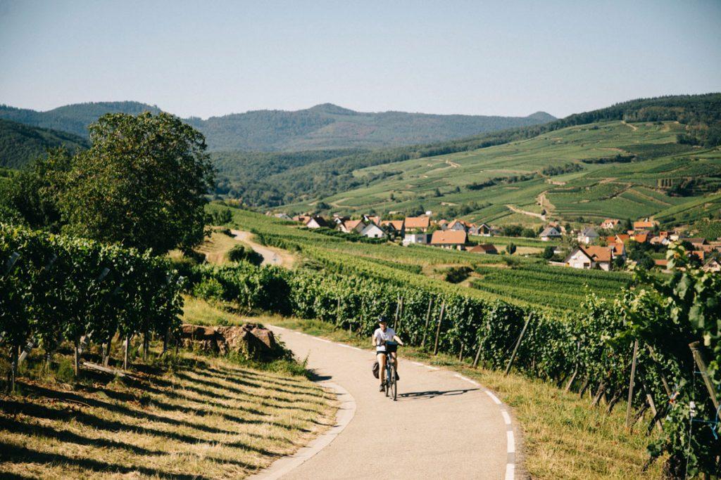 Où partir en été pour un itinéraire à vélo sur une semaine en Alsace. Crédit photo : Clara Ferrand - blog Wildroad