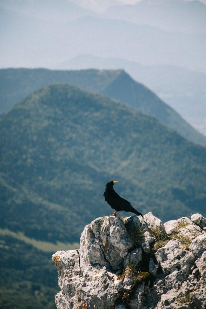 La randonnée jusqu'au sommet de la Pinéa. crédit photo : Clara Ferrand -blog Wildroad
