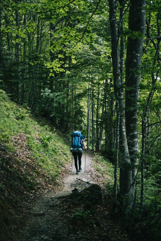 Le sentier de randonnée pour accéder au sommet de la pointe de la Galoppaz dans les bauges. crédit photo : Clara Ferrand - blog Wildroad