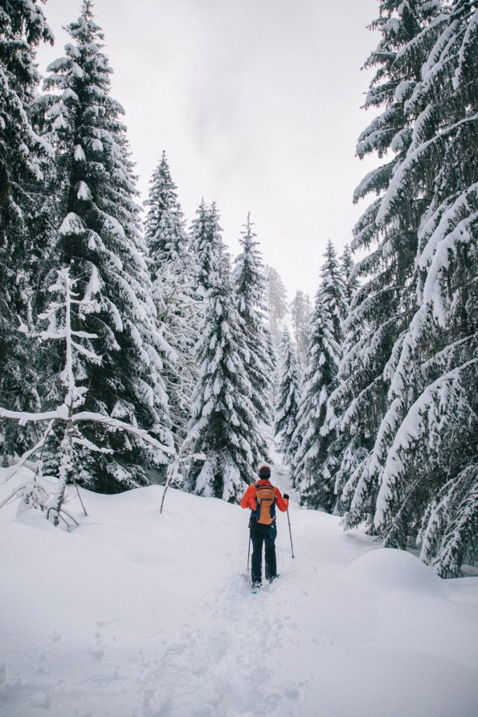 Quel sentiers de randonnée choisir pour une balade dans les Belledonnes accessible depuis Chambery. crédit photo : Clara Ferrand - blog Wildroad
