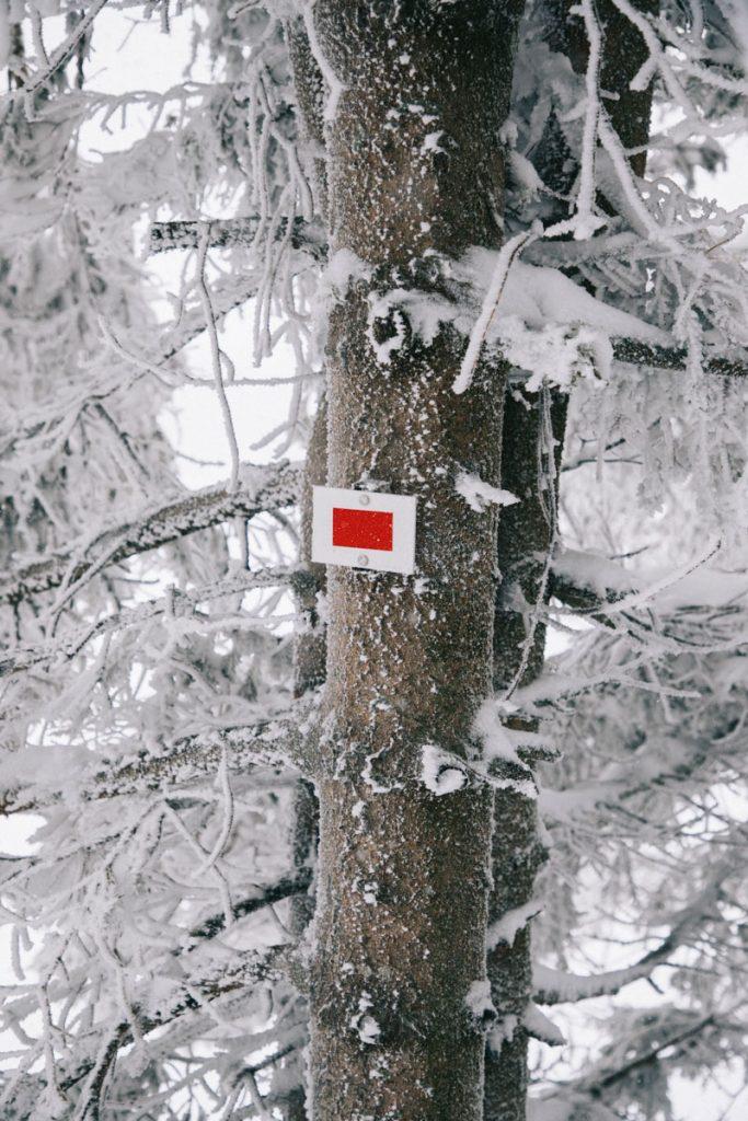 Faire le GR5 en hiver dans le massif des Vosges. crédit photo : Clara Ferrand - blog Wildroad