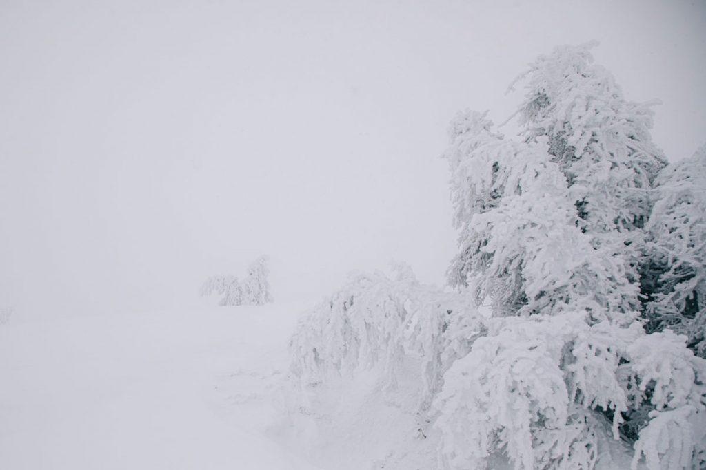 Le markstein en hiver avec la neige. crédit photo : Clara Ferrand - blog Wildroad