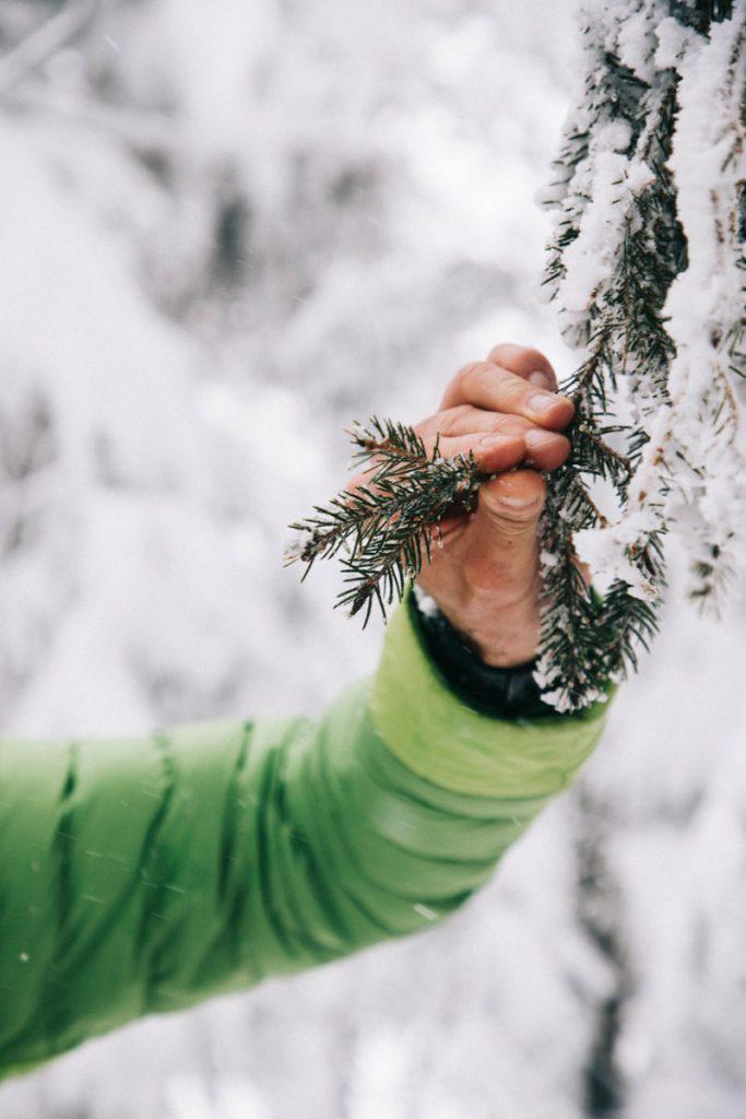 découverte du domaine skiable du Markstein en raquette. crédit photo : Clara Ferrand -blog Wildroad