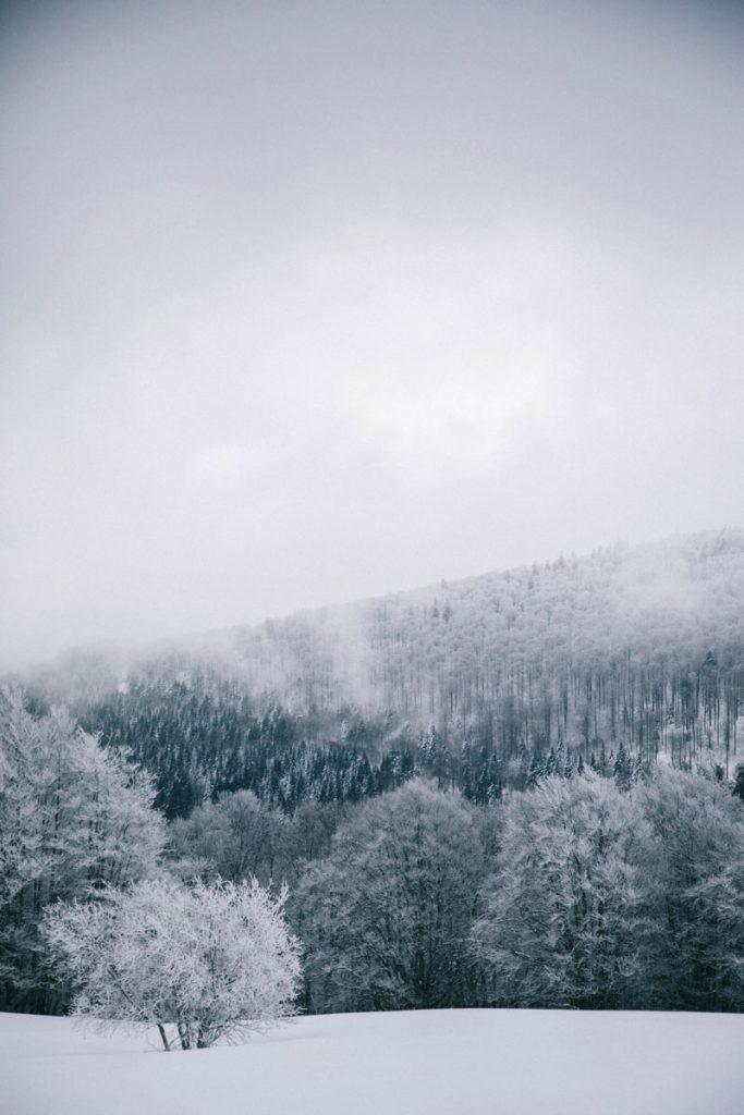 la station de ski du Markstein en hiver dans le Massif des Vosges. crédit photo : Clara Ferrand - blog Wildroad