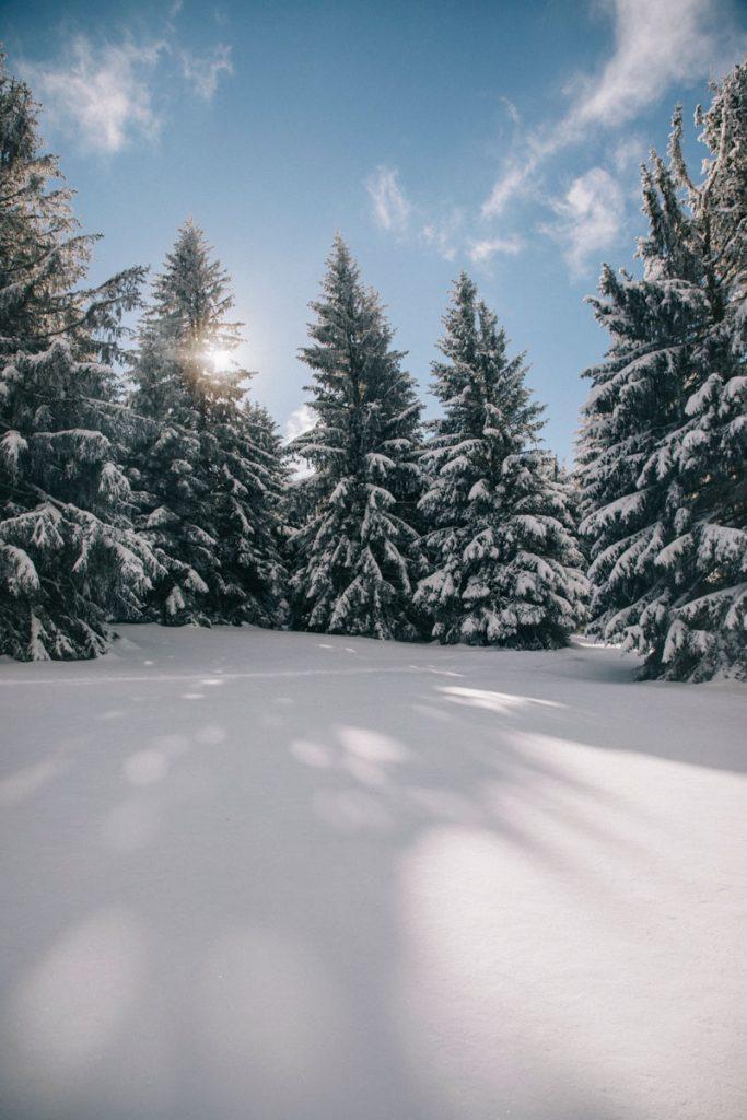 Le massif des Vosges sous la neige. crédit photo : Clara Ferrand - blog Wildroad
