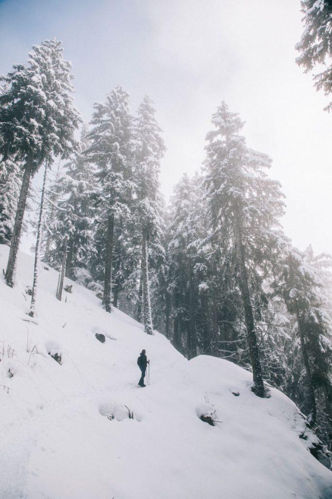 Randonnée au Collet d'Allevard en hiver. crédit photo : Clara Ferrand - blog WIldroad