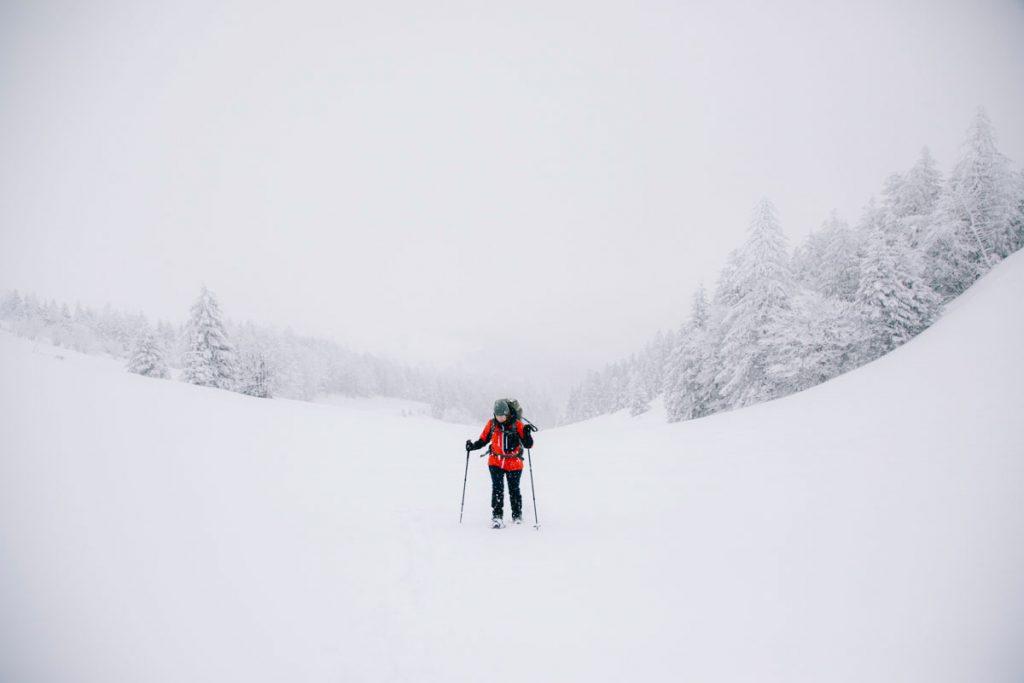 Randonnée en raquette autour du Markstein avec un guide. crédit photo : Clara Ferrand - blog Wildroad