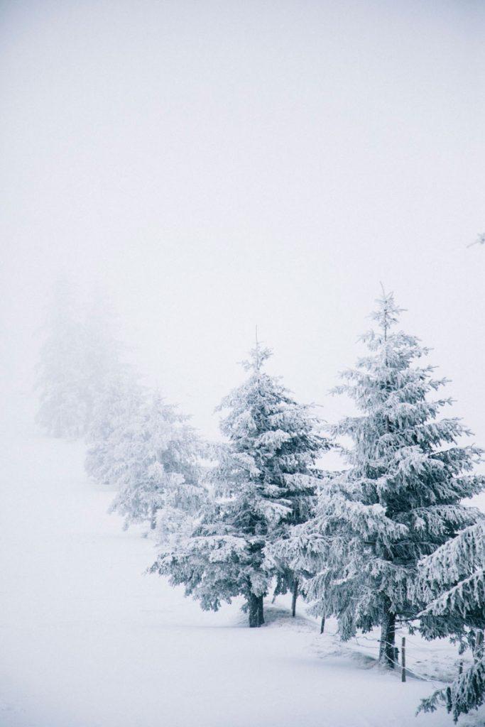 Le sommet du petit Ballon avec une tempête de neige. crédit photo : Clara Ferrand - blog Wildroad