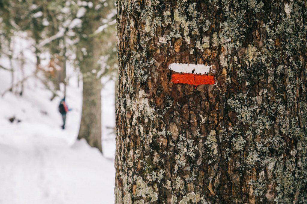 Balisage pour faire la randonnée des lacs d'Ayous en hiver dans les Pyrénées. crédit photo : Clara Ferrand - blog Wildroad