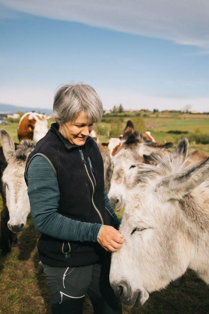 Randonner à dos d'âne dans le Forez avec la Halte bleue. crédit photo : Clara Ferrand - blog Wildroad