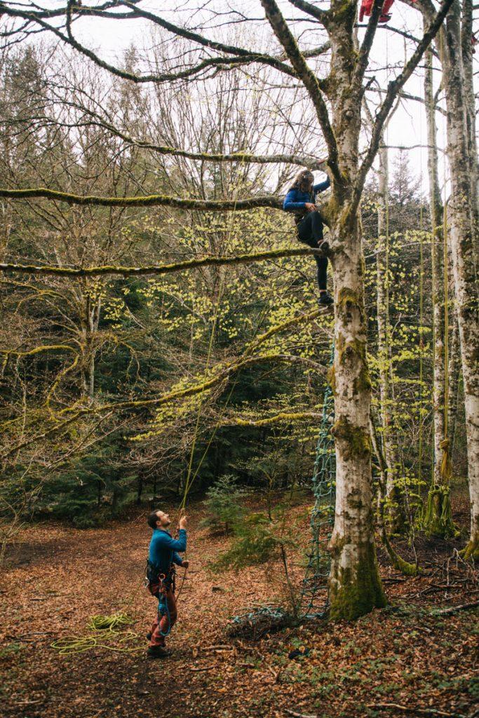 Activité insolite à faire dans la Loire : la grimpe d'arbre dans le Forez. crédit photo : Clara Ferrand - blog Wildroad