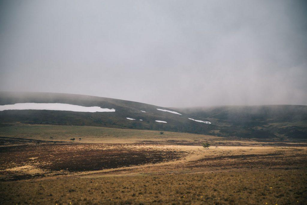 Traverser les Hautes-Chaumes du Forez en randonnée. crédit photo : Clara Ferrand - blog Wildroad