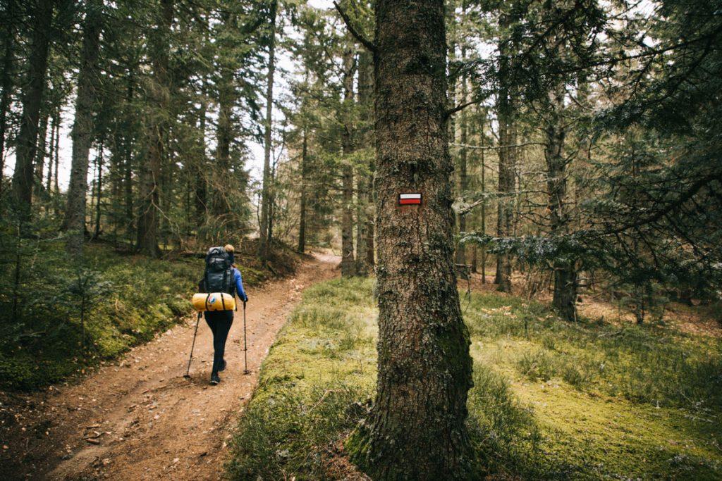 Randonner sur les GR3 un grand sentier de randonnée en France. crédit photo : Clara Ferrand - blog Wildroad