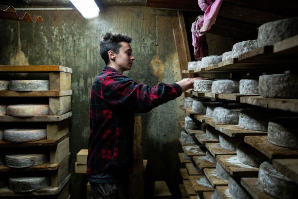 l'étape de l'affinage de la Tomme de Savoie pour un bon fromage. crédit photo : Clara Ferrand - blog Wildroad