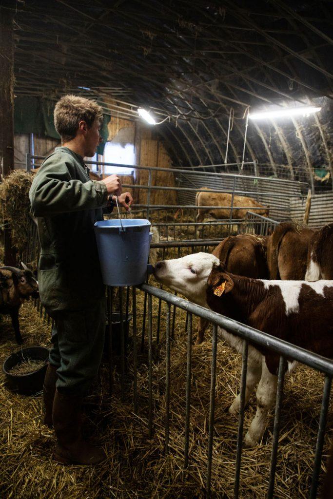 Suivre le quotidien d'un fermier producteur de Tomme de Savoie. crédit photo : Clara Ferrand -blog Wildroad