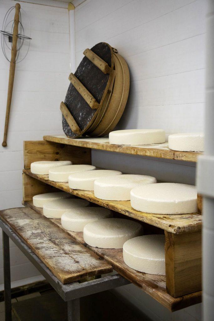 Des tommes de Savoie fraichement préparées. crédit photo : Clara Ferrand - blog Wildroad