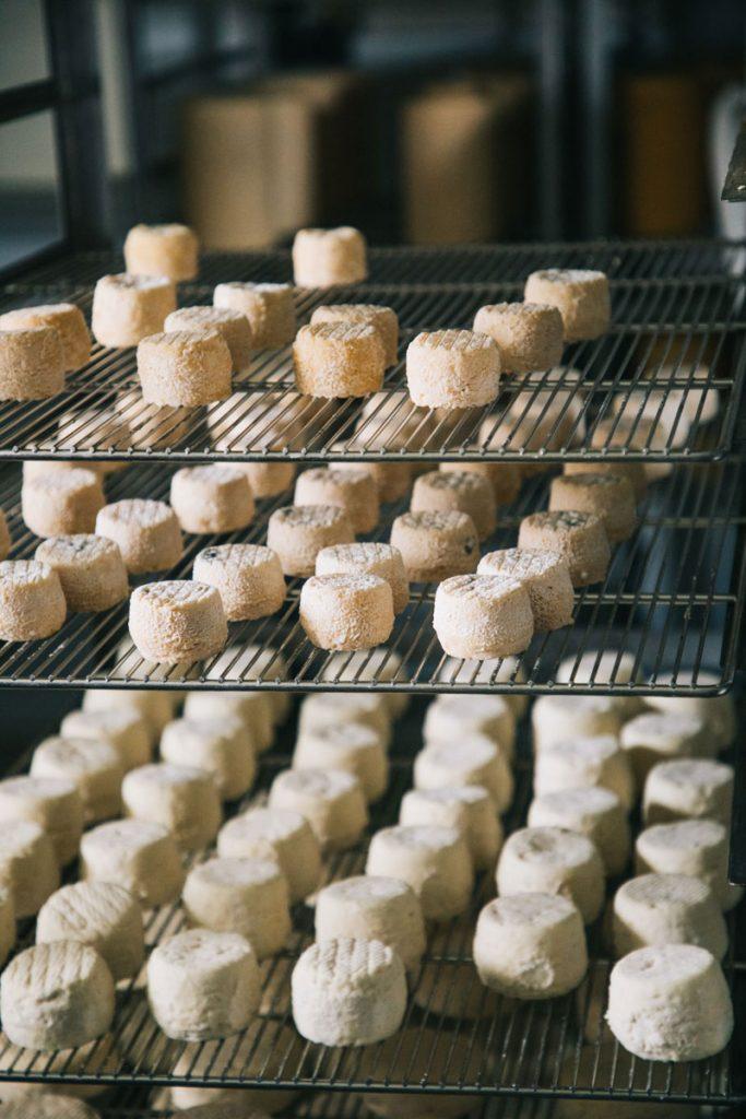 production de fromage fermier dans le Forez. crédit photo : Clara Ferrand - blog Wildroad