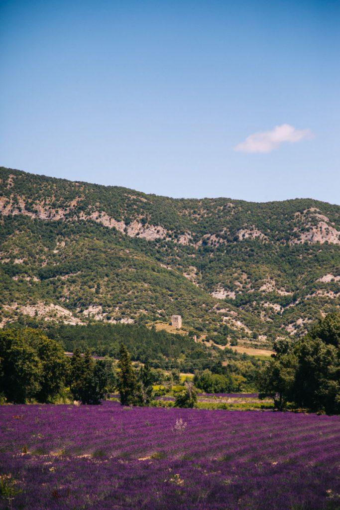 La tour d'Alençon lors de la randonnée autour du Lez. crédit photo : Clara Ferrand - blog Wildroad
