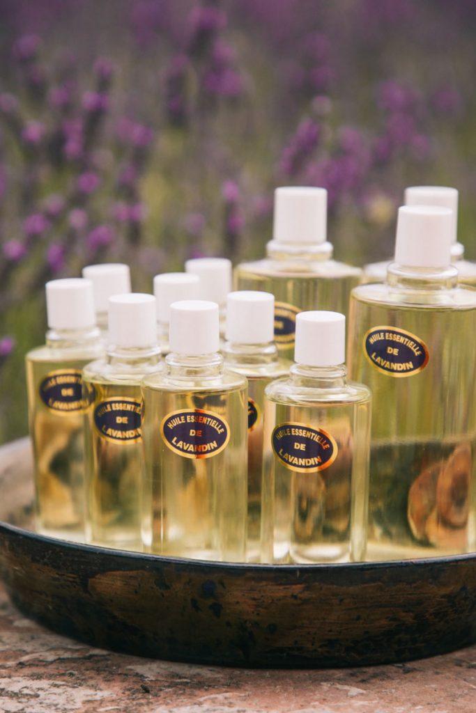 Comment est fabriqué l'huile essentielle de lavande. crédit photo : Clara Ferrand - blog Wildroad