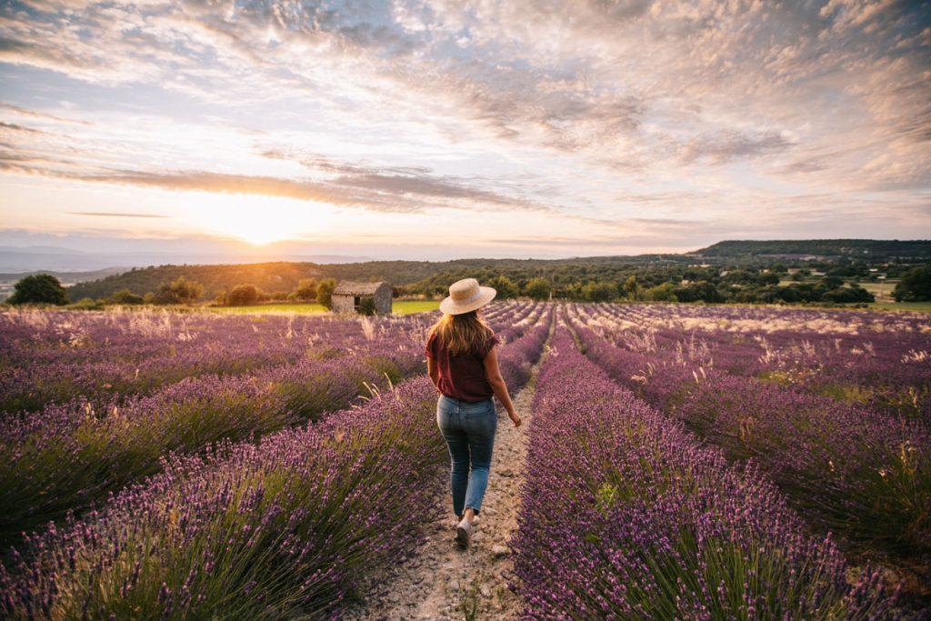 Quels sont les spot photo pour les champs de lavandes dans la Drôme Provençale. crédit photo : Clara Ferrand - blog WIldroad