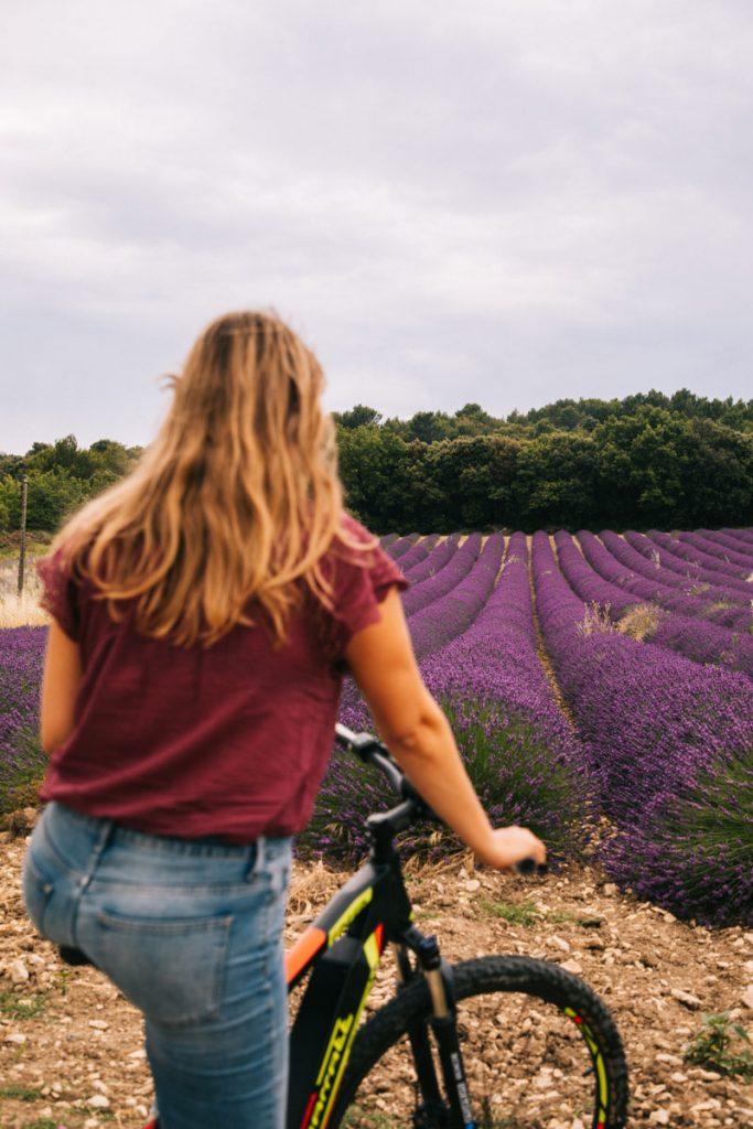 Sur la route des lavandes à vélo dans les autres de Clansaye. crédit photo : Clara Ferrand - blog WIldroad
