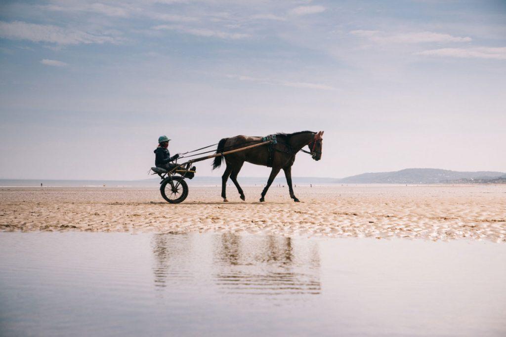 L'entrainement des chevaux de course sur la plage de Cabourg. crédit photo : Clara Ferrand - blog Wildroad
