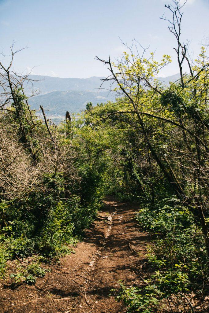 Randonnée à faire au départ de Chambery pour aller dans le massif de la Chartreuse. crédit photo : Clara Ferrand - blog Wildroad