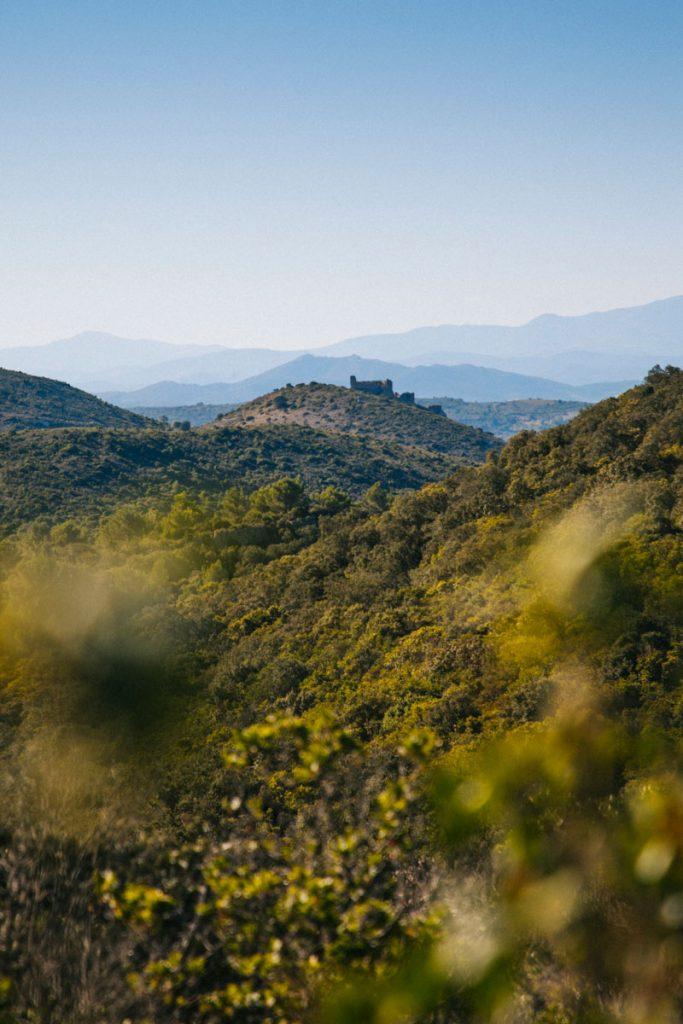 La chaîne des Pyrénées depuis le sentier cathare. crédit photo : Clara Ferrand - blog Wildroad
