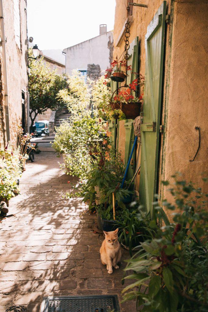 Les bonnes adresse pour manger à Duilhac-sous-peyrepertuse dans l'Aude. crédit photo : Clara Ferrand - blog Wildroad